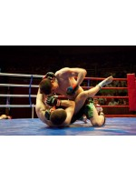 Pankration: MMA of antiquity