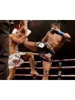 Muay Thai: the art of winning